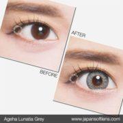 Lunatia Grey